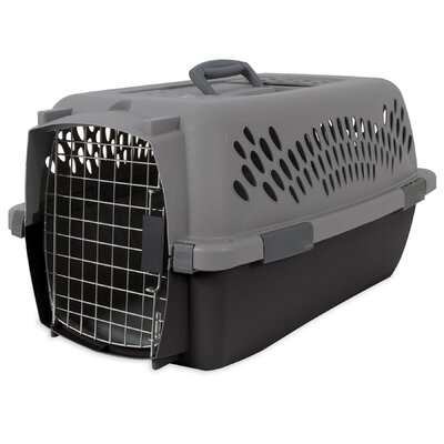 Pet Porter Traditional Pet Carrier Size: 15.2 H x 11.84 W x 23 L