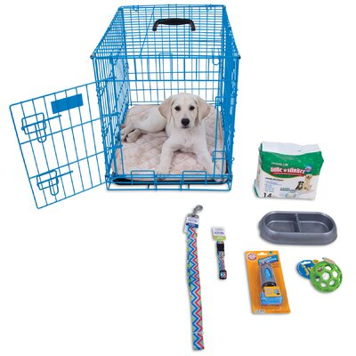 Millie Puppy Starter Kit Color: Blue