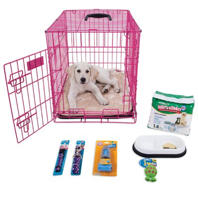 Millie Puppy Starter Kit Color: Pink EBF9C47B02454C7099000451F41EA82A