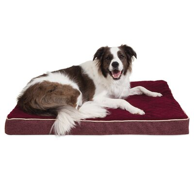 Orthopedic Dog Mat Size: 28 W x 18 D x 3.5 H, Color: Burgundy