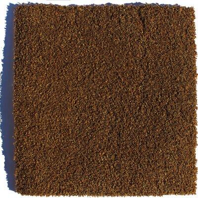 Sarasota Residential 24 x 24 Carpet Tile in Brown