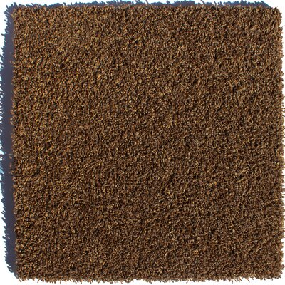 Tranquility Residential 24 x 24 Carpet Tile in Brown