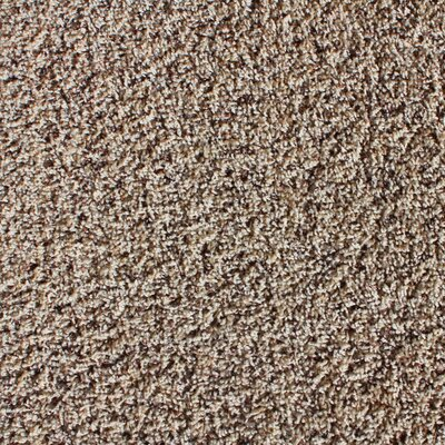 Global Residential Zen 22 x 22 Carpet Tile