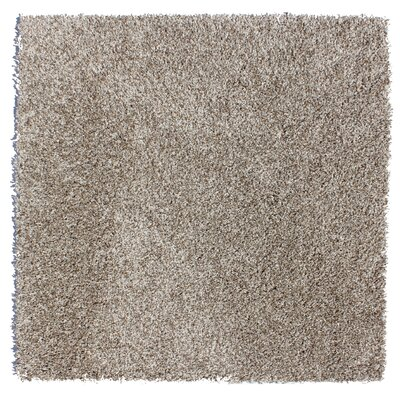 Sarasota Residential 24 X 24 Carpet Tile in Oyster Bay Beige
