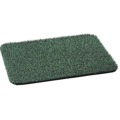 Flair Doormat Color: Green