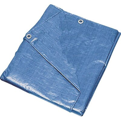 12 x 16 Medium Duty Tarp Color: Blue