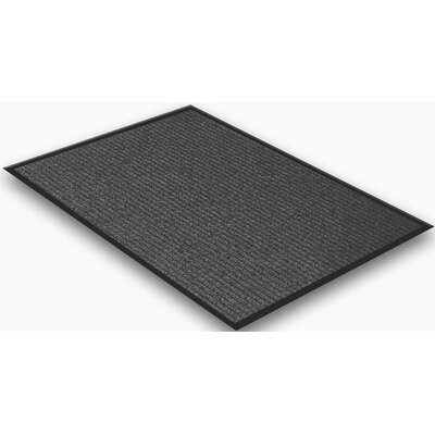 Doormat Mat Size: Rectangle 2 x 3, Color: Charcoal