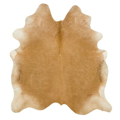 Long Hair Cowhide Beige Area Rug Rug Size: 6 x 76