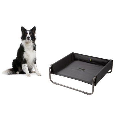 Soft Dog Bed Size: 28 L x 28 W, Color: Anthracite
