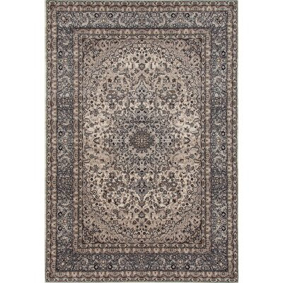 Elite Gray Area Rug Rug Size: 53 x 83