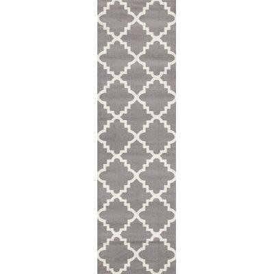 Newport Gray Area Rug Rug Size: Runner 2 x 72