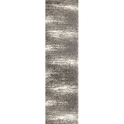 Raiden Contemporary Shag Gray Area Rug Rug Size: Runner 2 x 72