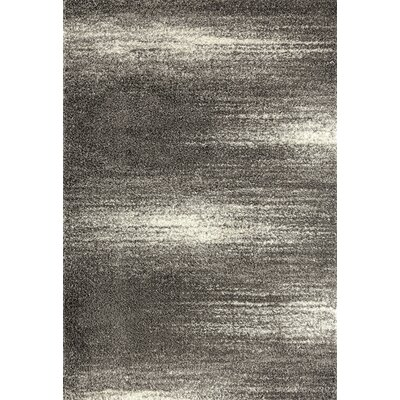 Raiden Contemporary Shag Gray Area Rug Rug Size: Rectangle 33 x 5