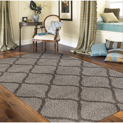 Strothers Shag Rectangle Gray Area Rug Rug Size: Rectangle 53 x 73