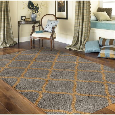 Strothers Shag Gray Area Rug Rug Size: Rectangle 53 x 73