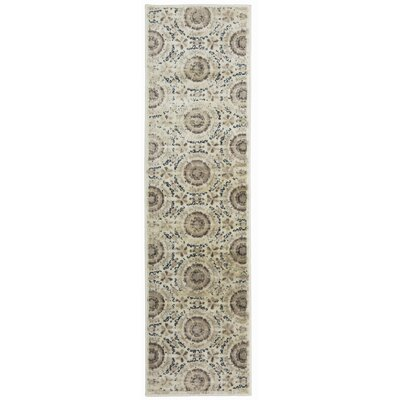 Alonza Distressed Design Cream Area Rug Rug Size: Runner 11 x 7