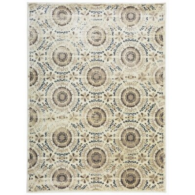 Alonza Distressed Design Cream Area Rug Rug Size: Rectangle 53 x 73