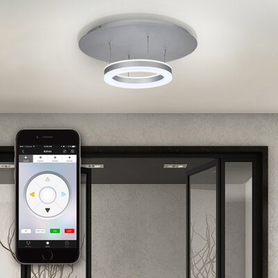 Europa LED 1-Light Semi Flush Mount