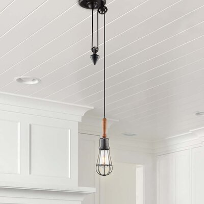 Galanti Rustic 1-Light LED Metal Mini Pendant