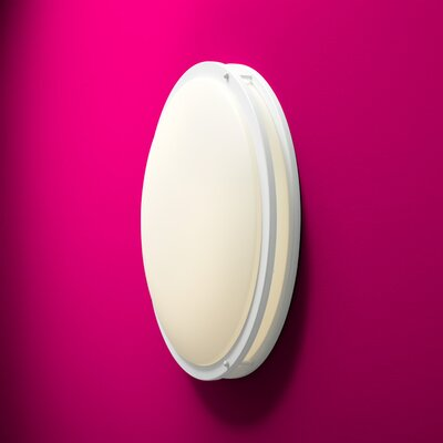 Oracle 2-Light Flush Mount Finish: White