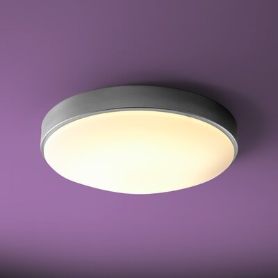 Selvage 2-Lights Metal Flush Mount Size: 4.75 H x 21 W x 21 D