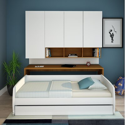 Rincon Compact Full/Double Storage Murphy Bed Color: Teak