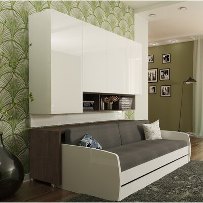 Rincon Compact Full/Double Storage Murphy Bed Color: Dark wood
