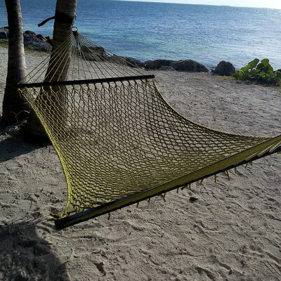 Caribbean Rope Polyester Tree Hammock Color: Olive
