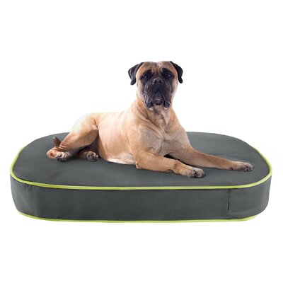 Gunner Oval Pet Napper Pillow Dog Bed Size: 40 L x 30 W