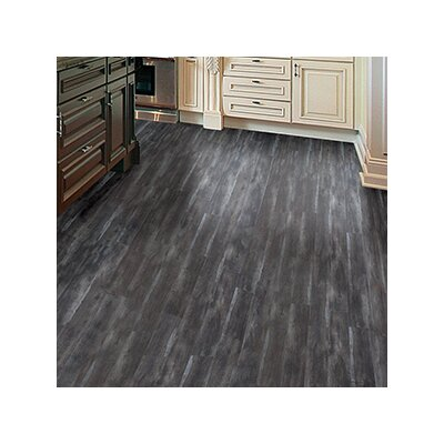 Timeless Revolution 6.5 x 48 x 12mm Canadian Maple Laminate in Peppercorn