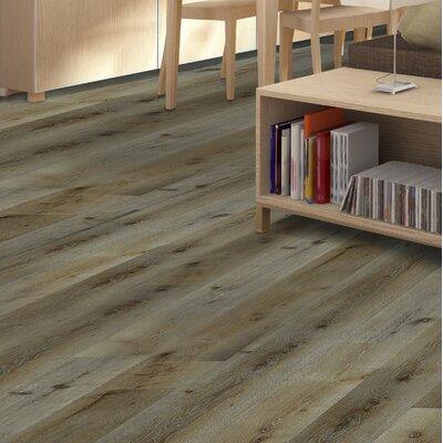 Oasis 8 x 48 x 12mm European Oak Laminate Flooring in Victoria