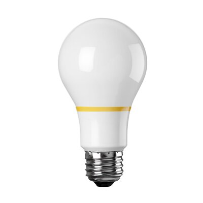 100W Standard Acandescent Light Bulb