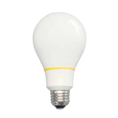 100W Standard Incandescent Light Bulb
