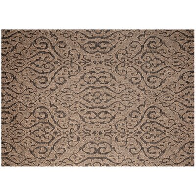 Moroccan Coconut Tan Outdoor Area Rug Rug Size: 53 x 74