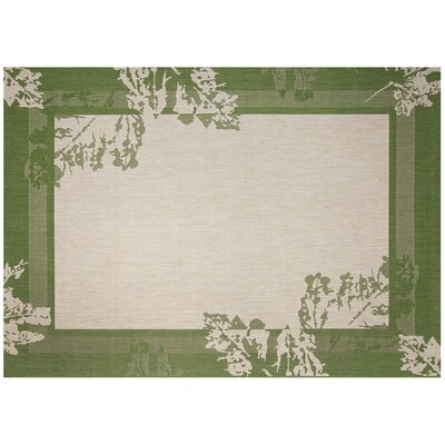 Impressions Spring Green/Beige Indoor/Outdoor Area Rug Rug Size: 53 x 74