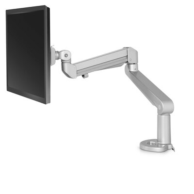 Edge Height Adjustable Desk Mount Finish: Silver