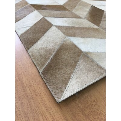 Hand-Woven Brown / Ivory Area Rug Rug Size: Rectangle 4 x 6