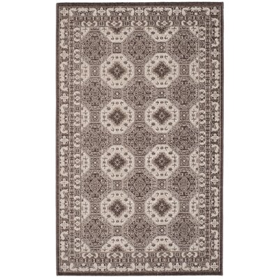 Salisbury Brown/Ivory Area Rug Rug Size: Rectangle 3 x 5