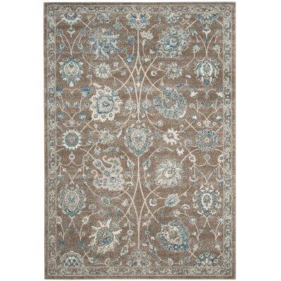 Bassham Light Brown/Blue Area Rug Rug Size: 9 x 12