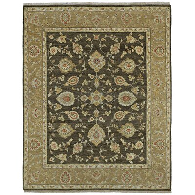Clarkston Hand-Knotted Chocolate Area Rug Rug Size: 8 x 10