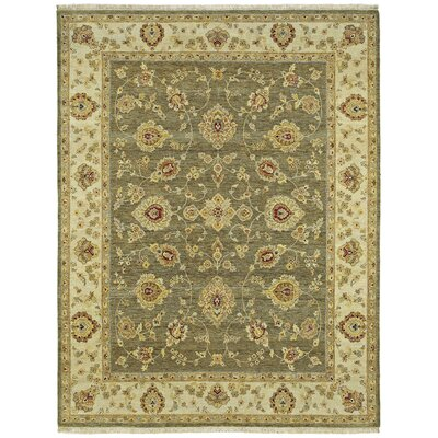 Clarkston Hand-Knotted Wool Olive Area Rug Rug Size: Rectangle 9 x 12