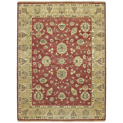 Barge Hand-Knotted Red Area Rug Rug Size: 6 x 9