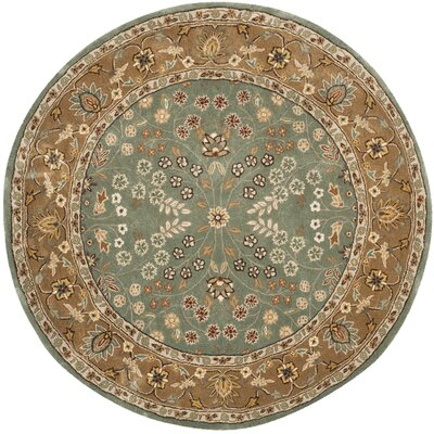 Regner Hand-Hooked Sage/Copper Area Rug Rug Size: Rectangle 3 x 5