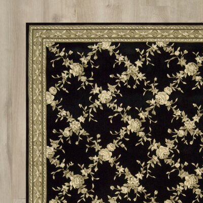 Baron Hand-Tufted Black Area Rug