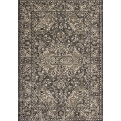 Appleridge Slate Gray Area Rug Rug Size: Round 710