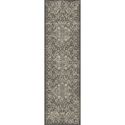 Appleridge Slate Gray Area Rug Rug Size: Runner 23 x 76