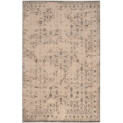 Roma Cream / Gray Area Rug Rug Size: 51 x 76