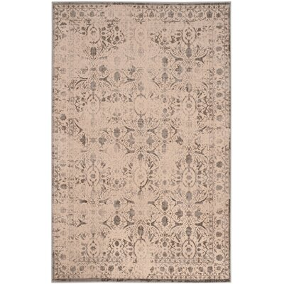 Roma Cream / Gray Area Rug Rug Size: 67 x 92