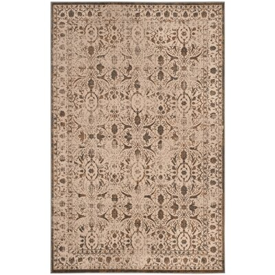 Roma Cream / Bronze Area Rug Rug Size: Rectangle 4 x 6