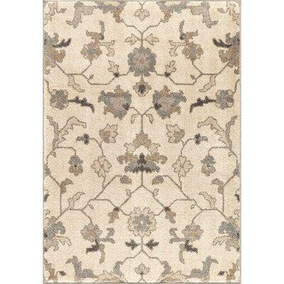 Donaldson Ivory Area Rug Rug Size: 710 x 1010